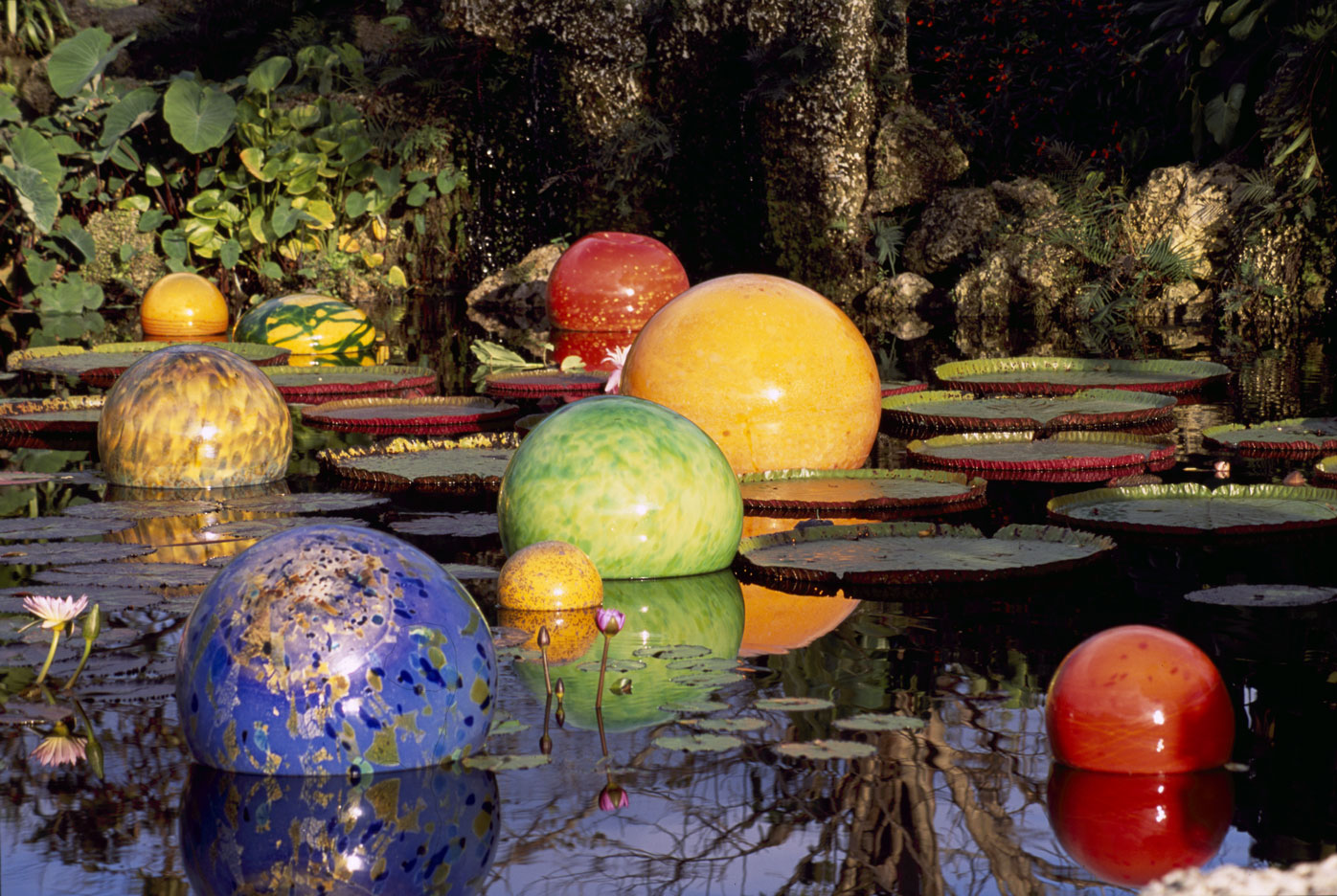 Dale chihuly saint lucia sculpture park - What time does victoria gardens open ...